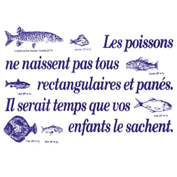 tamato_accroche_poisson